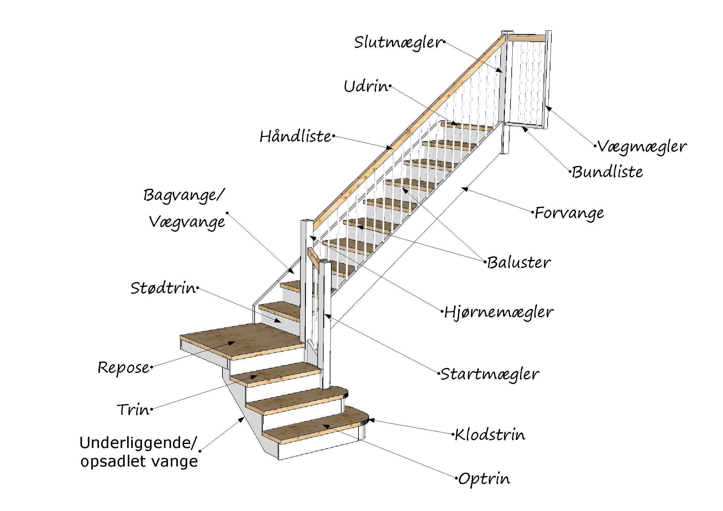Picture of: Trappeordbog Bliv Klogere Pa Betydninger Af Begreberne